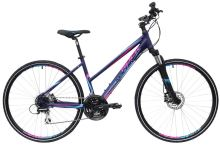 Kolo Rock Machine CrossRide 300 Lady Drak blue/Blue/Pink 2016