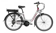 "Elektrokolo LOVELEC Polaris 2020, vel. 19"", silver/red, nosičová baterie 13Ah, zadní motor"
